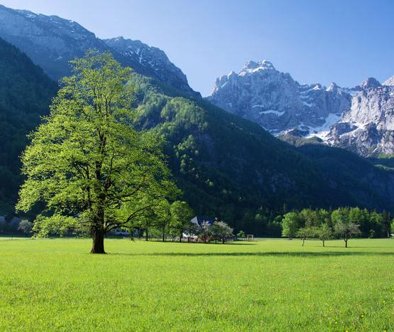 self guided walking tours austria